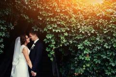 Beaux jeunes couples de mariage embrassant, jeune mariée blonde avec le flowe Photographie stock