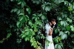 Beaux jeunes couples de mariage embrassant, jeune mariée blonde avec le flowe Image libre de droits