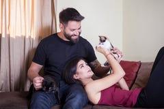 Beaux jeunes couples magnifiques tenant des chats dans des mains Photographie stock