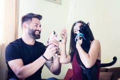 Beaux jeunes couples magnifiques tenant des chats dans des mains Image libre de droits