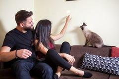 Beaux jeunes couples magnifiques tenant des chats dans des mains Photos libres de droits