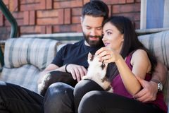 Beaux jeunes couples magnifiques tenant des chats dans des mains Photographie stock libre de droits