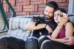 Beaux jeunes couples magnifiques tenant des chats dans des mains Photo stock
