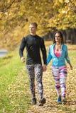 Beaux jeunes couples marchant ensemble en parc Vue arrière Images libres de droits