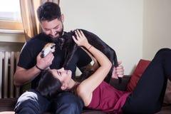Beaux jeunes couples tenant des chats dans des mains Photographie stock