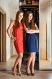 Beaux jeunes jumeaux de soeur photo libre de droits