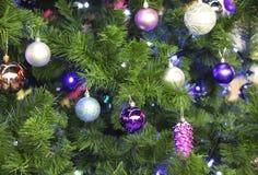 Beaux jouets pourpres brillants sur un arbre velu de nouvelle année Photos stock