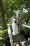 Beaux mariée et marié Photographie stock
