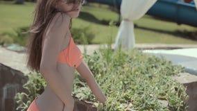 Beaux modèles dans un bikini détendant et ayant clips vidéos