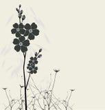 Beaux myosotis des marais Images stock