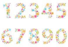 Beaux nombres de fleur Photo stock