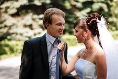 Beaux nouveaux mariés de couples Images libres de droits