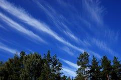Beaux nuages capricieux Images libres de droits