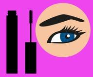 Beaux oeil et mascara de femme Illustration de Vecteur
