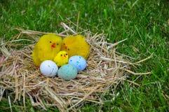 Beaux oeufs de pâques sur une herbe verte Photo libre de droits