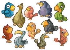 Beaux oiseaux colorés. D'isolement illustration stock