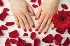 beaux ongles de doigt avec le vernis à ongles et les pétales rouges Photo stock