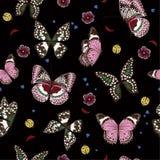 Beaux papillons de nuit volant, insecte de dame, tapotement sans couture d'insecte illustration libre de droits