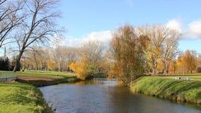 Beaux parc et rivière automnaux clips vidéos