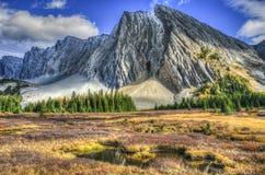 Beaux paysages de montagne de chute Photo stock