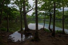 Beaux paysages tranquilles avec de l'eau se reflétants du Shiretoko 5 lacs Photo stock