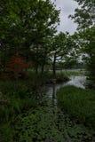 Beaux paysages tranquilles avec de l'eau se reflétants du Shiretoko 5 lacs Photographie stock libre de droits
