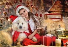 Beaux petite fille et chien à Noël Image stock