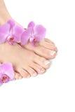 Beaux pieds avec le pedicure français de clou de station thermale Photographie stock