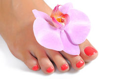 Beaux pieds avec le pedicure parfait de station thermale Images stock