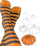 Beaux pieds dans les chaussettes stripy avec le potiron Image stock