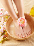 Beaux pieds femelles photographie stock libre de droits