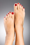 Beaux pieds femelles avec la pédicurie rouge Photographie stock libre de droits