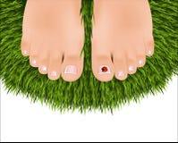 Beaux pieds femelles avec une pédicurie Image libre de droits