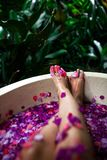 Beaux pieds femelles dans le bain extérieur avec les fleurs tropicales Station thermale, photographie stock