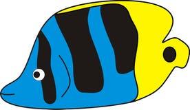 Beaux poissons d'océan sur la couleur bleue noire jaune Photos libres de droits