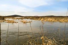 Beaux rivière et champs image stock