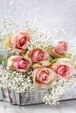 Beaux roses et Gypsophila roses (fleurs de Bébé-souffle) Photographie stock libre de droits