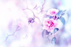 Beaux roses et papillons dans la neige et gel roses sur un fond bleu et rose snowing Image naturelle d'hiver artistique photos stock