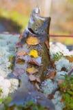 Beaux saumons d'automne Images libres de droits