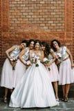 Beaux sourires de la jeune mariée et de ses amis Image stock