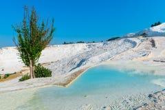 Beaux travertins de l'eau de turquoise Images libres de droits