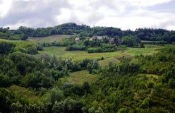 Beaux vignobles situés dans le secteur de timorasso dans Piémont image stock