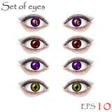 Beaux yeux femelles Image libre de droits