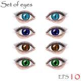 Beaux yeux femelles Image stock