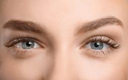 Beaux yeux femelles avec de longs cils Photo libre de droits