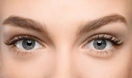 Beaux yeux femelles avec de longs cils, Photographie stock libre de droits