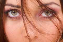 Beaux yeux verts Image stock