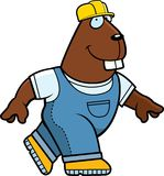 Beaver Builder Royalty Free Stock Photography