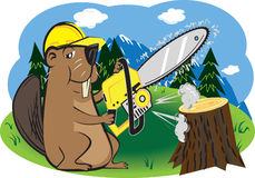 Beaver with Chainsaw Royalty Free Stock Image