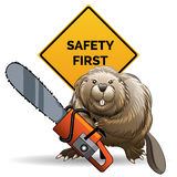 Beaver with a chainsaw Stock Photos